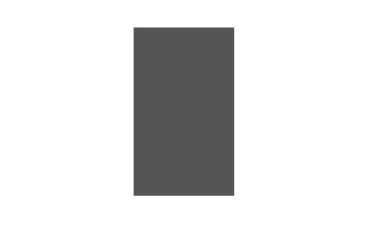 Logo Einsa